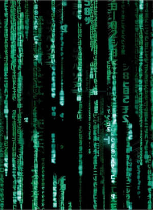 The Roots of the Matrix