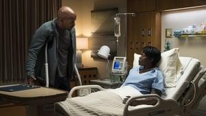 Episodio TV Online The Good Doctor HD Temporada 2 E8 Relatos