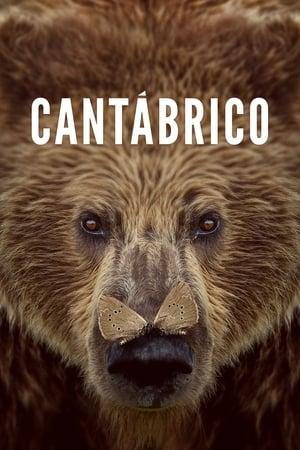 Cantábrico (Los dominios del oso pardo)