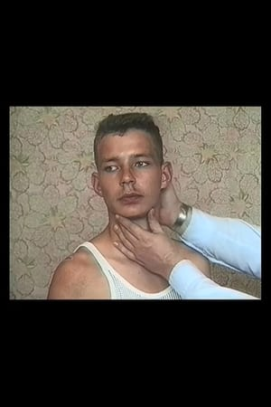 The Fall of Communism as Seen in Gay Pornography