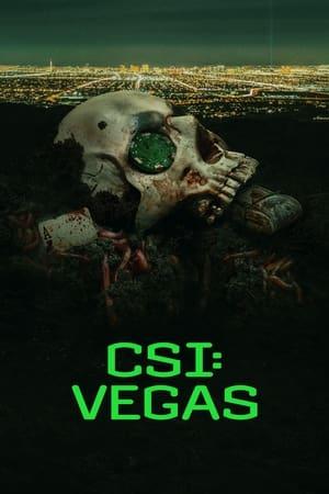 CSI: Vegas en streaming ou téléchargement
