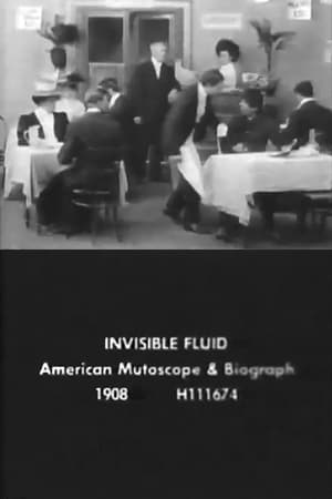 The Invisible Fluid