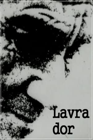 Lavra-dor