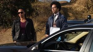 Lethal Weapon Season 3 :Episode 11  Dial M for Murtaugh