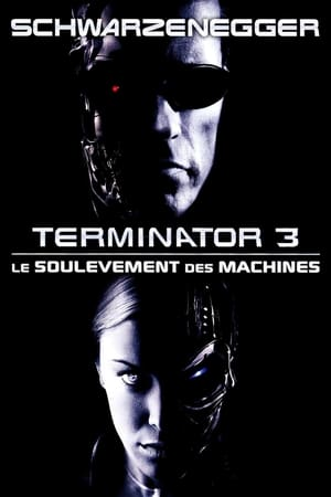 Télécharger Terminator 3 : Le Soulèvement des machines ou regarder en streaming Torrent magnet