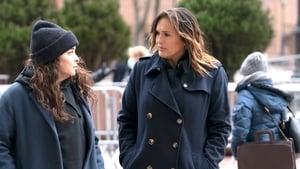Law & Order: Special Victims Unit Season 22 :Episode 7  Hunt, Trap, Rape, and Release