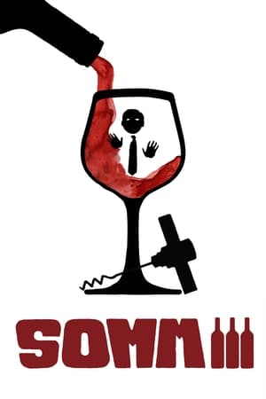 Watch Somm 3 Full Movie