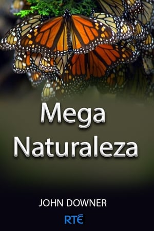 Meganaturaleza