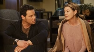 Grey's Anatomy Season 12 :Episode 16  When It Hurts So Bad