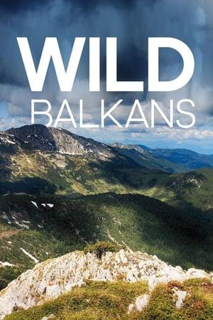 Wilder Balkan