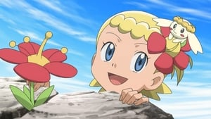Pokémon Season 17 :Episode 26  To Find a Fairy Flower!