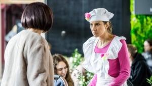 Zakochani po uszy Season 4 :Episode 63  Episode 63