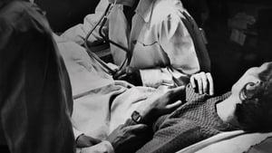 Captura de Reversing Roe (Caso Roe: El aborto en los EEUU)