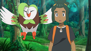 Pokémon Season 22 : No Stone Unturned!