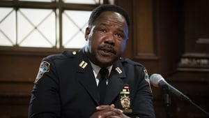Law & Order: Special Victims Unit Season 17 :Episode 5  Community Policing