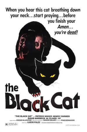 Watch The Black Cat Full Movie