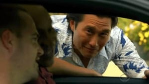 Hawaii Five-0 Season 2 :Episode 21  Touch of Death
