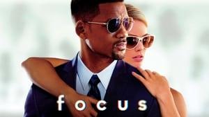 Focus torrent