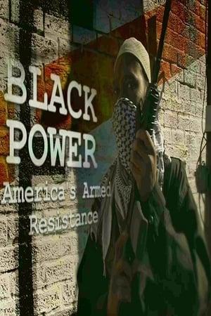 Black Power: America's Armed Resistance (2016)