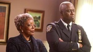 Brooklyn Nine-Nine Season 4 : Your Honor