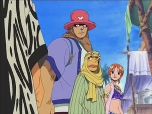 Captured Zoro! Chopper's Emergency Operations!