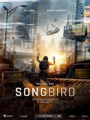 Télécharger Songbird ou regarder en streaming Torrent magnet