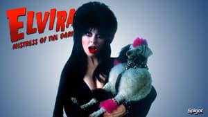 Captura de Elvira, reina de las tinieblas