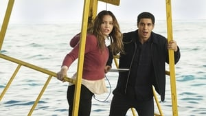 Episodio TV Online Scorpion HD Temporada 3 E15 Sharknerdo