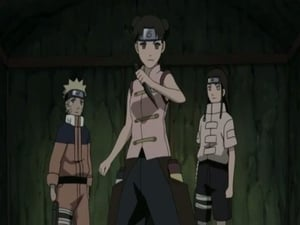 Naruto Shippūden Season 9 :Episode 184  Deploy! Team Tenten
