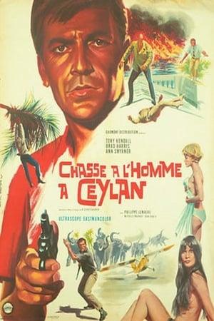 Chasse à l'homme à Ceylan