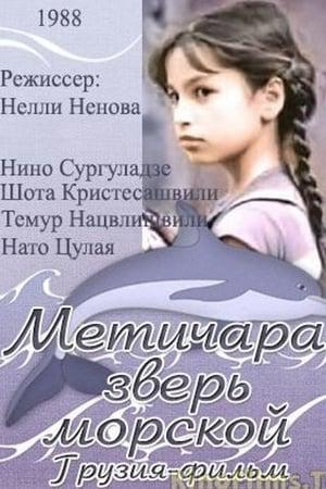 Metichara
