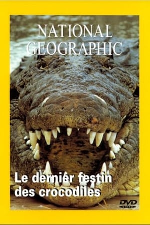 National Geographic Le dernier festin du crocodile