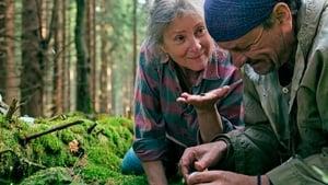 Pokot (2017), filme online subtitrat în Română