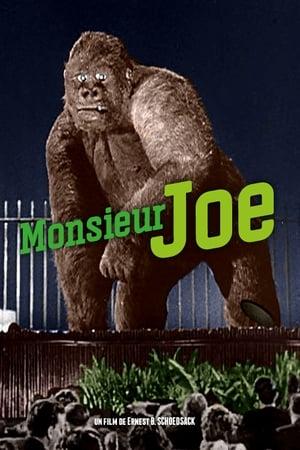 Monsieur Joe
