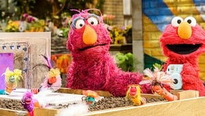 Sesame Street Season 49 :Episode 2  Picture This