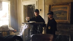 NCIS Season 4 : Friends and Lovers