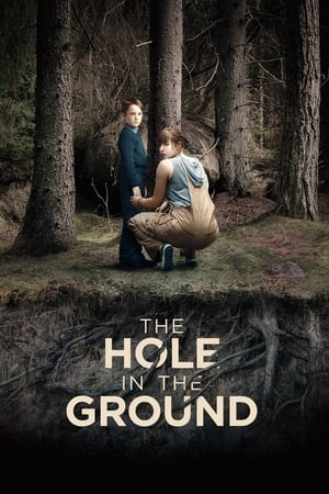 Affiche The Hole in the Ground