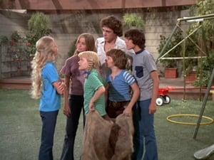 Online The Brady Bunch Sezonul 4 Episodul 8 Episodul 8