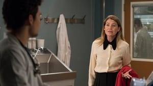 Grey's Anatomy Season 15 :Episode 17  And Dream of Sheep