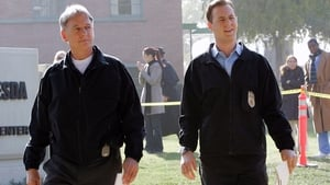 NCIS Season 5 : Corporal Punishment