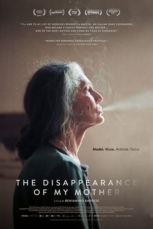 Watch The Disappearance of My Mother Full Movie