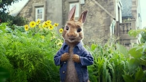 Captura de Peter Rabbit Pelicula Completa HD 2018