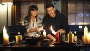 Bones Season 6 : The Blackout in the Blizzard