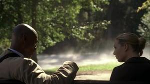 Online Fringe Sezonul 2 Episodul 8 Episodul 8