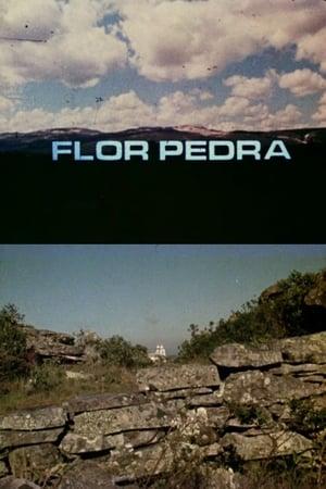 Flor Pedra