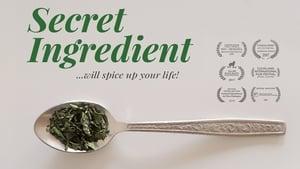 Watch Secret Ingredient (2017)
