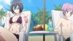 Summer Vacation / Online Secret / Eight of Misaki