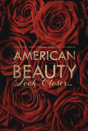 American Beauty: Look Closer...