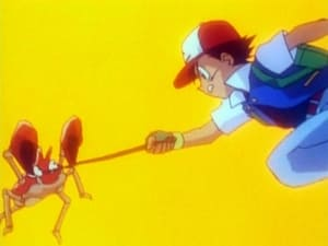 Pokemon 1X13 Online Subtitulado