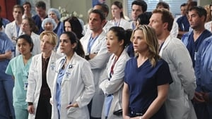 Grey's Anatomy Season 6 : State of Love and Trust